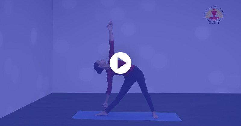 Common Yoga Protocol-HINDI